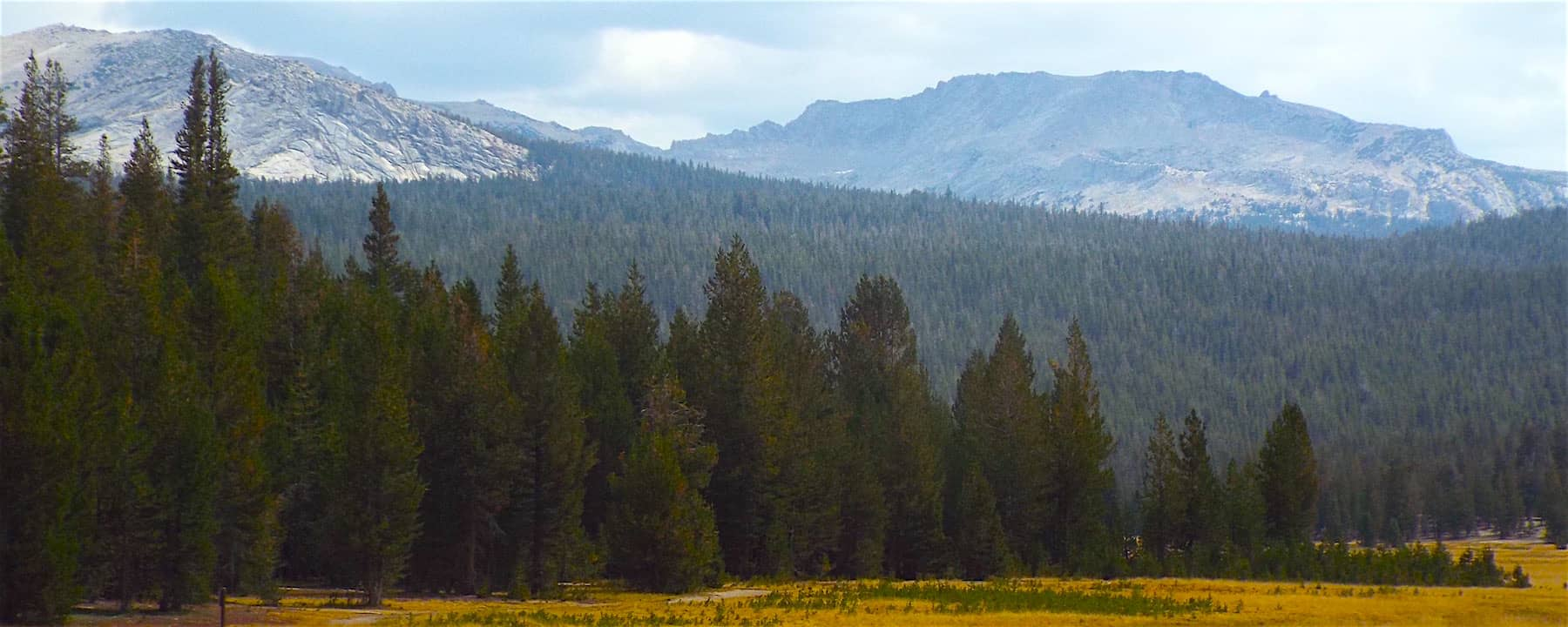 The drive from Yosemite to Mammoth lakes